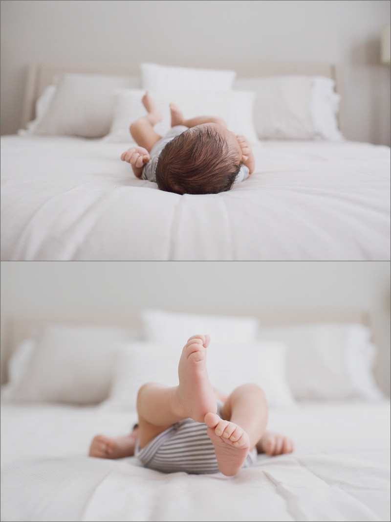 newton newborn photographer